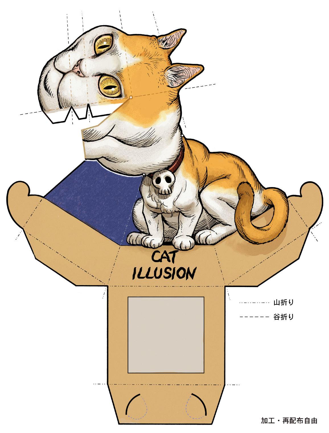diy_cat_optical_illusion