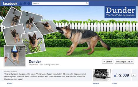facebook-timeline-cover-blog-1
