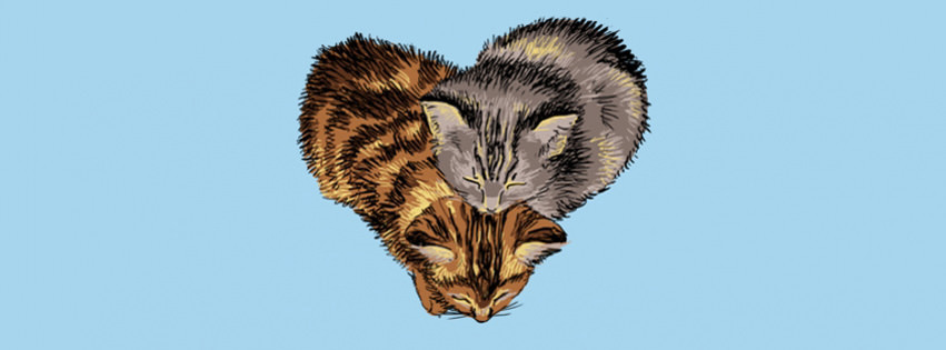 heart cats cute