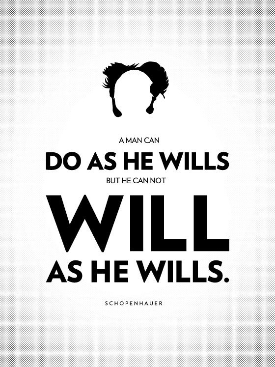 Man can do what he wills but he cannot will what he wills. - Arthur Schopenhauer