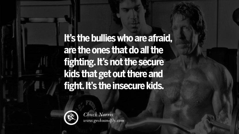 Chuck Norris Quotes, Facts and Jokes It's the bullies who are afraid, are the ones that do all the fighting. It's not the secure kids that get out there and fight. It's the insecure kids. best inspirational tumblr quotes instagram
