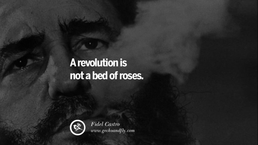 A revolution is not a bed of roses. - Fidel Castro Quotes by Fidel Castro and Che Guevara best inspirational tumblr quotes instagram