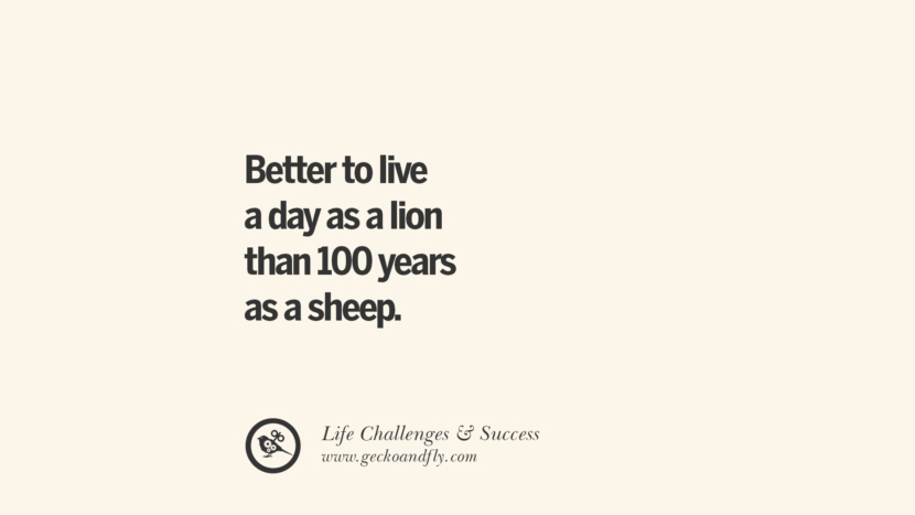 Better to live a day as a lion than 100 years as a sheep. quotes about life challenge and success instagram 36 Quotes About Life Challenges And The Pursuit Of Success twitter reddit facebook pinterest tumblr famous inspirational best sayings