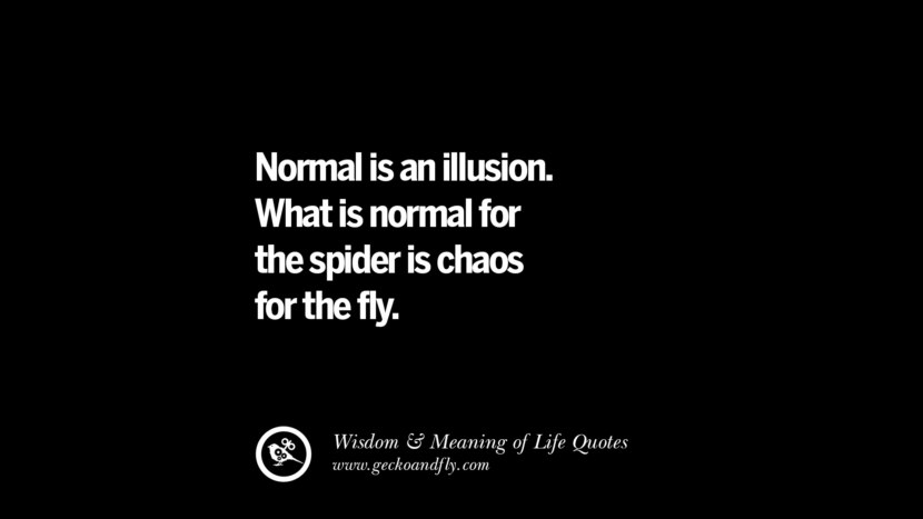 Normal is an illusion. What is normal for the spider is chaos for the fly.