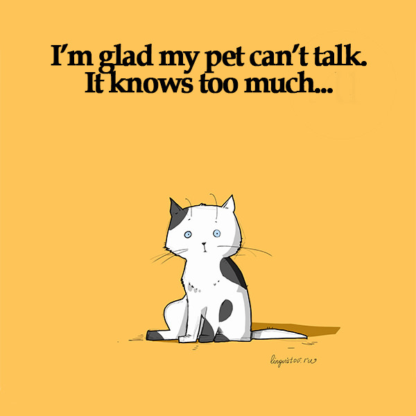 I'm glad my pet can't talk. It knows too much... 40 Funny Doodles For Cat Lovers and Your Cat Crazy Lady Friend grumpy tom talking nyan instagram pinterest facebook twitter comic pictures youtube