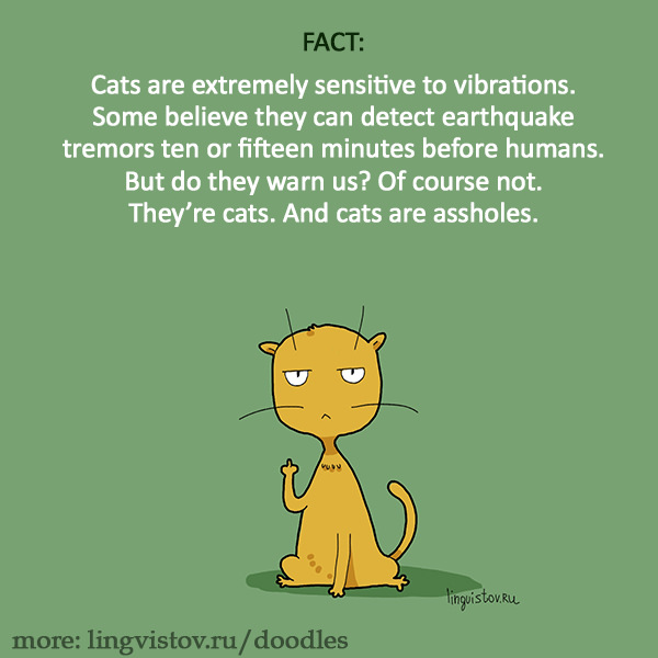Cats are extremely sensitive to vibrations. Some believe they can detect earthquake tremors ten or fifteen minutes before humans. But do they warn us? Of course not. They're cats. And cats are assholes. 40 Funny Doodles For Cat Lovers and Your Cat Crazy Lady Friend grumpy tom talking nyan instagram pinterest facebook twitter comic pictures youtube