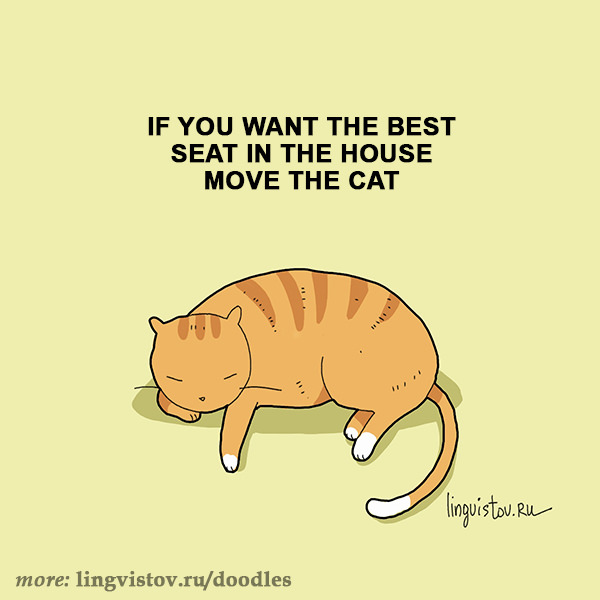 If you want the best seat in the house move the cat. 40 Funny Doodles For Cat Lovers and Your Cat Crazy Lady Friend grumpy tom talking nyan instagram pinterest facebook twitter comic pictures youtube