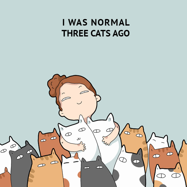 I was normal three cats ago. 40 Funny Doodles For Cat Lovers and Your Cat Crazy Lady Friend grumpy tom talking nyan instagram pinterest facebook twitter comic pictures youtube