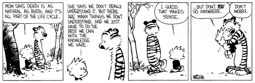 calvin hobbes death meaning