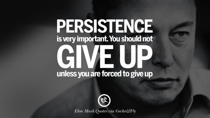 Persistence is very important. You should not give up unless you are forced to give up. Elon Musk Quotes on Business, The Future