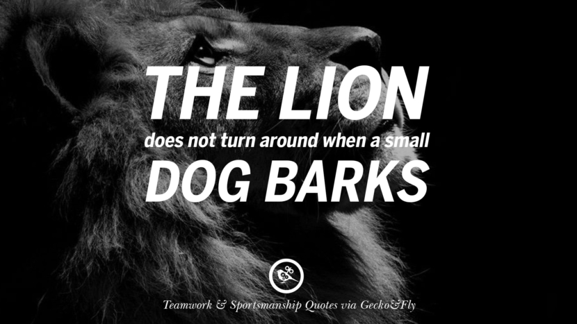 The lion does not turn around when a small dog barks. Quotes Sportsmanship Teamwork Sports Soccer Fifa Football Cricket NBA Basketball Hockey Tennis Volleyball Table Tennis Baseball Rugby American Football Golf facebook twitter pinterest team work sports saying live online olympics games teamwork quotes inspirational motivational