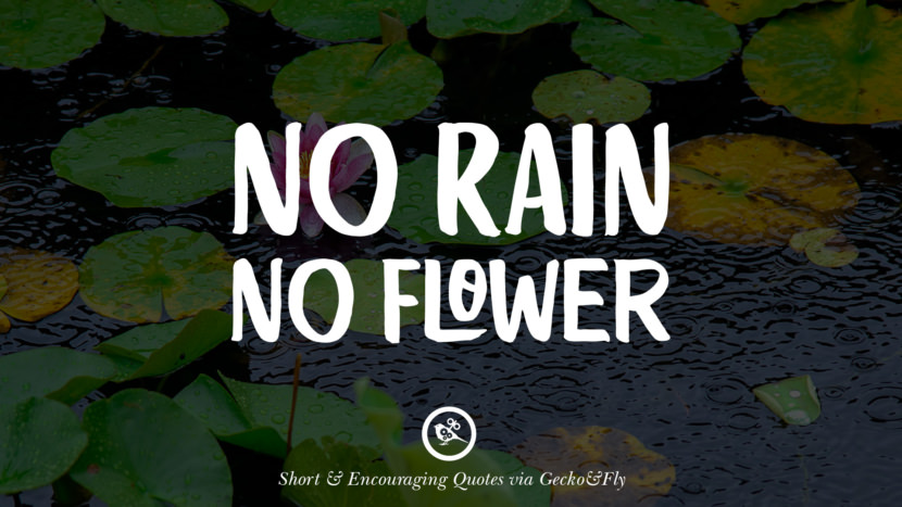 No rain no flower. Beautiful Short, Nice And Encouraging Quotes For An Inspirational Day