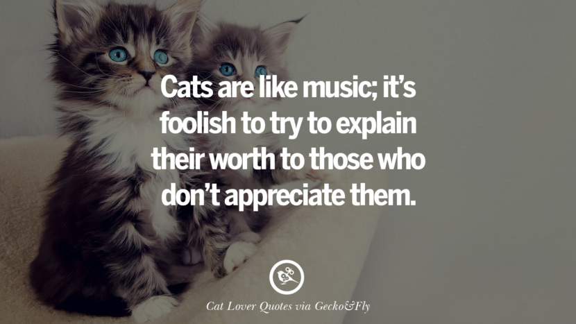 Cats are like music; it's foolish to try to explain their worth to those who don't appreciate them. Cute Cat Images With Quotes For Crazy Cat Ladies, Gentlemen And Lovers