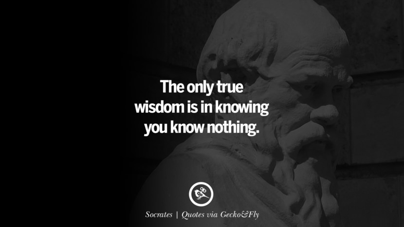 The only true wisdom is in knowing you know nothing. - Socrates