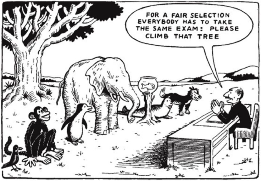 education comic cartoon fish monkey elephant bird climb tree exam