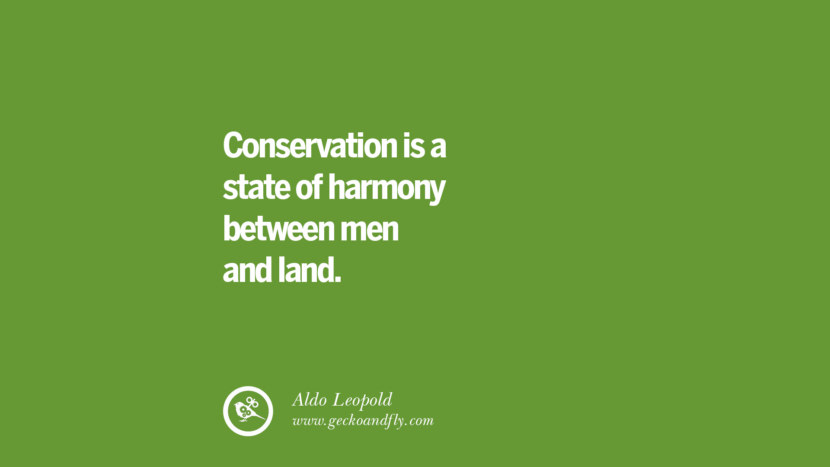 Conservation is a state of harmony between men and land. – Aldo Leopold Sustainability Quotes On Recycling, Energy, Ecology, And Biodiversity