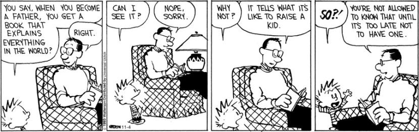 Calvin and Hobbes father fatherhood